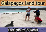 sulidae yacht galapagos package