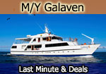 Galaven Galapagos expedition yacht & galapagos last minute cruises deals